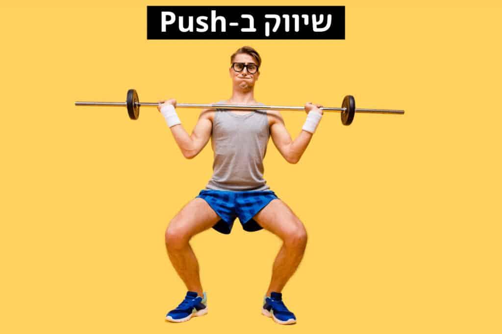 WP web push