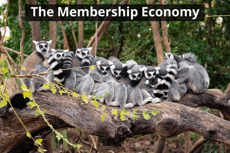 WP The Membership Economy