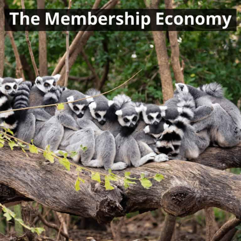 the membership economy –  על כלכלת מנויים וכלכלה משתפת